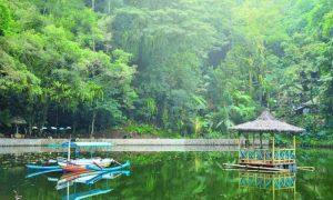 Rowo Bayu