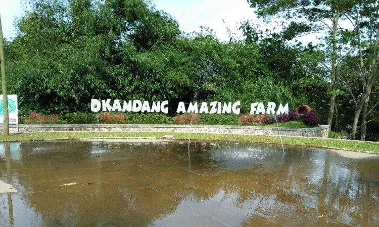 D'Kandang Amazing Farm Depok