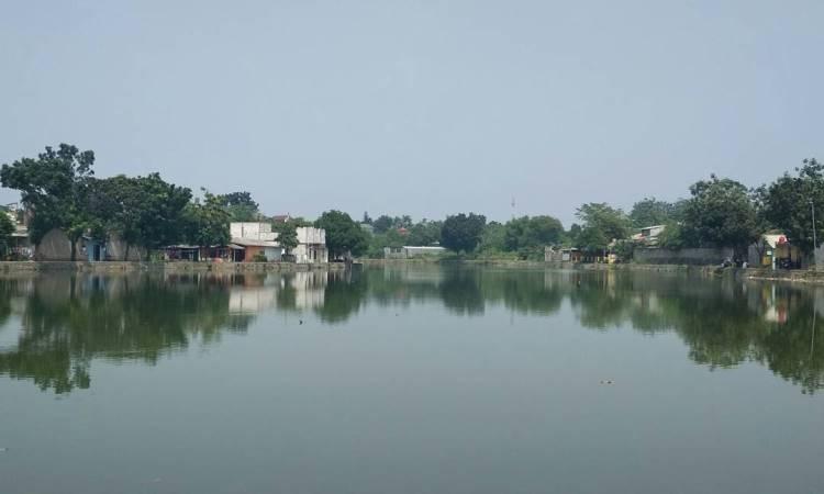 Situ Citayam