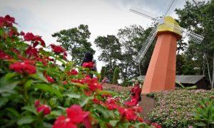 Taman Bunga Bandungan