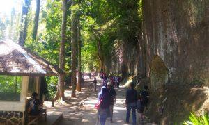 Taman Hutan Raya IR Juanda