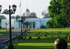 26 Tempat Wisata di Bogor