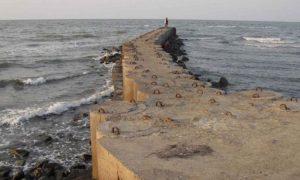 Pantai Tirang Menco Wedung Semarang