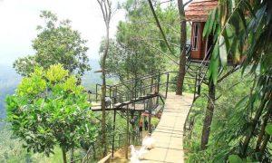 Bukit Asmara Situk