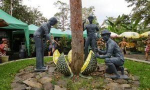 Lokasi: Duyung,Fresh Green Trawas Buntal, Kec. Trawas, Kab. Mojokerto, Jawa Timur. - Image Credit by Travpackerindonesia.com