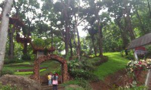 Pesona Keindahan & Spot Foto di Situ Mustika