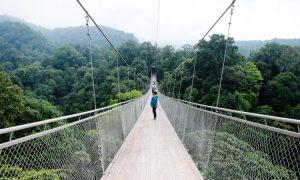 Berbagai Fasilitas yang Ditawarkan Jembatan Gantung Situ Gunung