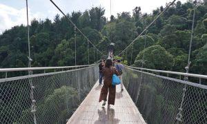 Harga Tiket Masuk Jembatan Gantung Situ Gunung