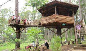 Mengintip Rumah Pohon Kekinian di Kota Bekasi