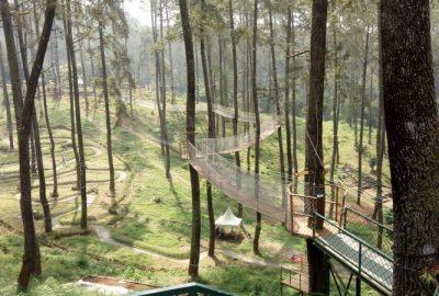 Orchid Forest Lembang Bandung