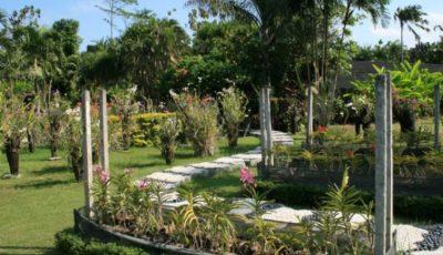 Taman Semarang