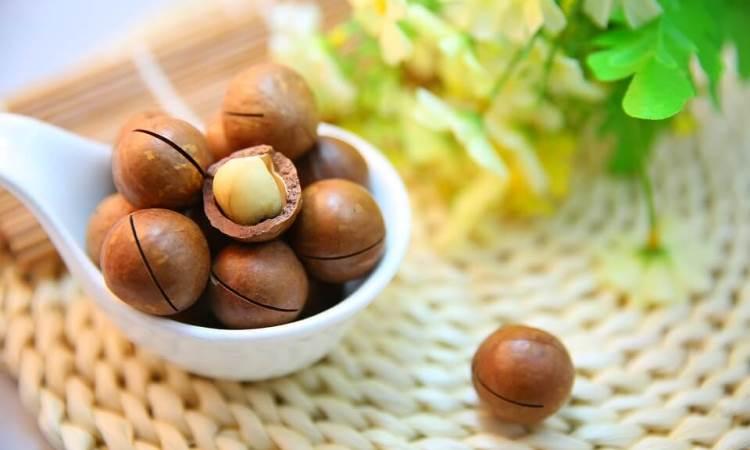 Kacang Macadamia
