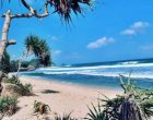 Wisata Pantai Pacitan