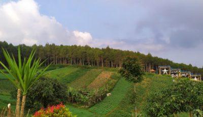 Bukit Moko Bandung