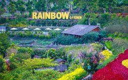 Rainbow Garden, Wisata Taman Bunga Menakjubkan di Lembang Bandung