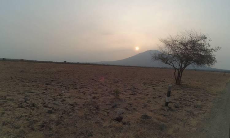 Fasilitas di Taman Nasional Baluran