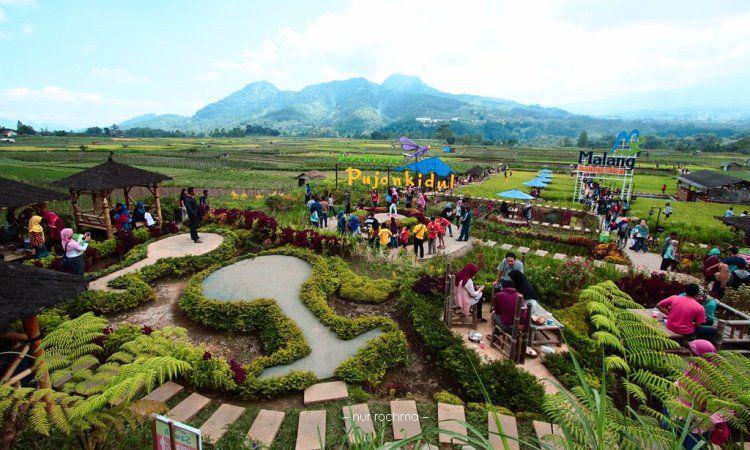 Kegiatan di Desa Pujon