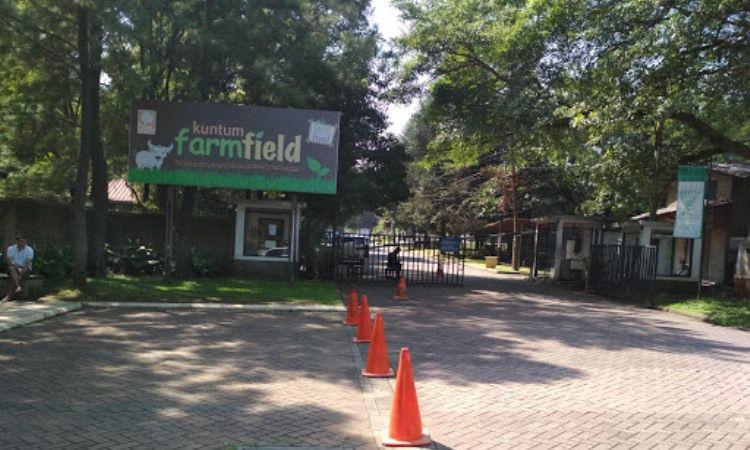 Alamat Kuntum Farmfield
