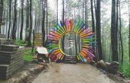 Puthuk Panggang Welut, Menikmati Panorama Alam Hutan Pinus di Mojokerto